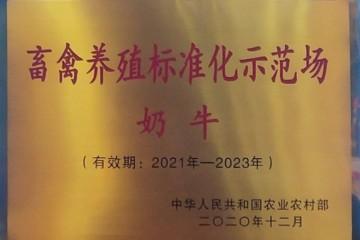 """光明牧业下属金山种奶牛场荣获""""2020农业农村部畜禽养殖标准化示范场""""正式授牌"""